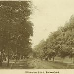 Looking south towards Rusholme 1908
