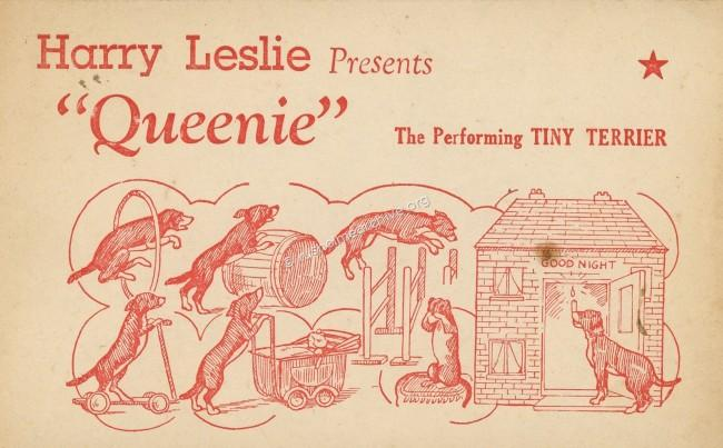 Undated postcard for 'Queenie'