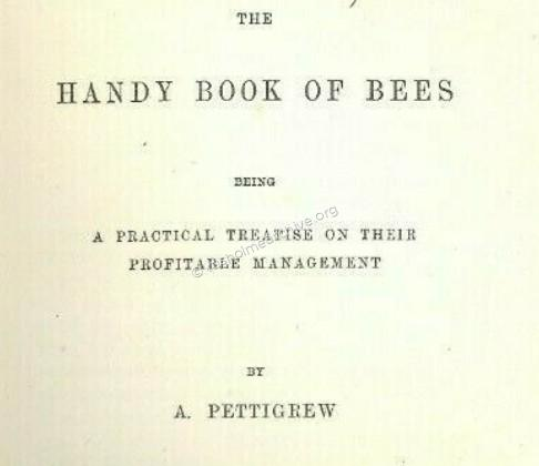 Handy Book of Bees , fly page