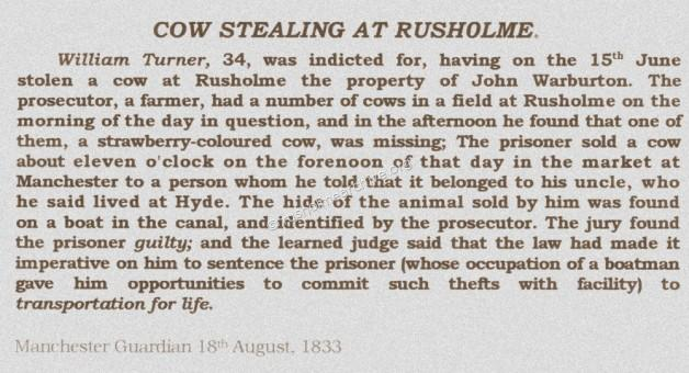 Cow stealing 1833