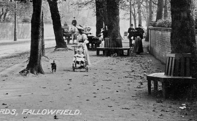 Fallowfield Boulevard 1907
